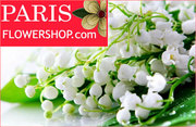 Delight your loved ones with these special arrangements of flowers