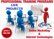 Best SEO Training Course in Noida