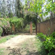 Farm House For Sale In Jaunapur