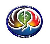WEBSITE DESIGN AND DEVELOPMENT .NET .PHP AND .JSP (LFCR6054)