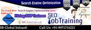 SEO Trainees/Internship Delhi,  New Delhi, 919971716221
