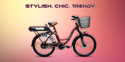 Electrical Bicycles -A Cheaper and Eco-friendly Mode of Transportation