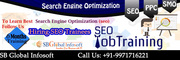 SEO Training in delhi, 09971716221