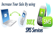 Internet SMS Marketing in Delhi