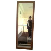 Postural Training Mirror (Postural Training Mirror)