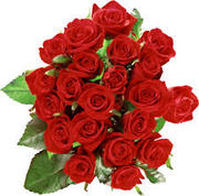 flowers and All types of gifts delivery in India.