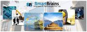 Smart Brains  SmartBrains