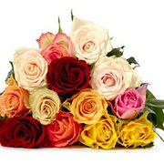 Send flowers to India, flowers deliver to all our india
