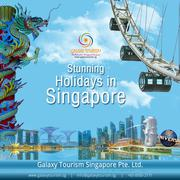 Book Singapore City Tour Package