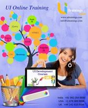 UI Design Training   UI Design Classes in India