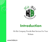Hitbiz SEO Company - Experts In Web Positioning in Search Engines