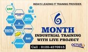 Octus Provide 6 Months Industrial Training in Noida