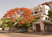 Get Sneh Deep Guest House (RTDC), Jaipur