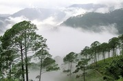 Araku Valley Tour Packages