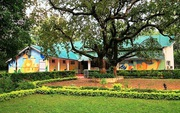 Get Hotel Amaltas MPTDC in Pachmarhi with Class Accommodation.