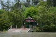 Get Sajnekhali Tourist Lodge (WBTDC) in, Sunderbans with Class Accommod