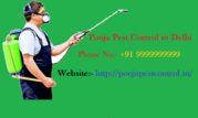 Pooja Pest control in Delhi