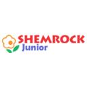 shemrockjunior- affordable playschool in paschim vihar