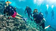 Scuba Diving Activity in Andaman