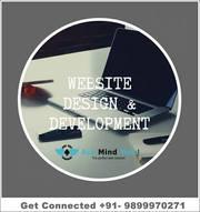 Web Development Company in Delhi (+91-8595356149)