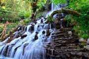 Uttarakhand Tour Packages - Travel Tourister