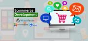 Acquire E-Commerce Websites Through E-Commerce Development Company in