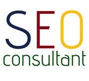 Freelance SEO Service in India