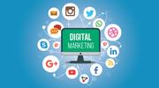 Top Digital Marketing Training Institute in Rohini