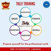 Get Ready for Professional Job! with Tally Training in Delhi