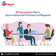 Best SAP HCM SuccessFactors Online Training