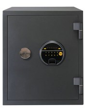Biometric Fire Safe - YFF/420/FG2