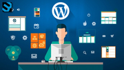 How to find the best wordpress agency for your business?