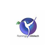 Flamingo Infotech - Best Website Development Company In Punjabi Bagh
