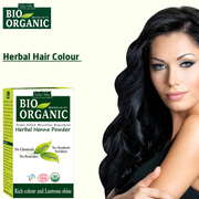Buy Certified Organic Pure Henna Powder 100g at Indus Valley
