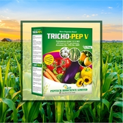 Trichoderma Viride 1.5% w.p : Peptech Biosciences Ltd