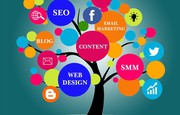 Digital Marketing Agency in India - Intellivisiontechnologies
