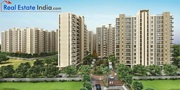4 BHK Apartments for Sale in Dwarka,  Delhi