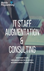 IT Staff Augmentation & Consulting