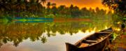 Backwaters,  Beaches & Hills of Kerala.......