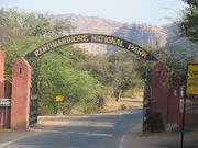 Best Tiger safari zone in Ranthambore